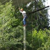 Top of the Baumstamm